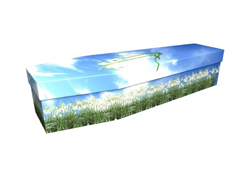 Coffin of the Month - Snowdrop