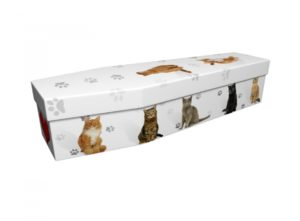Cardboard coffin - Cats with Heart - 3877