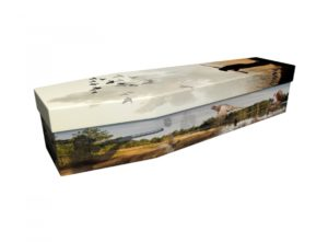 Cardboard coffin - Country Life - 3835