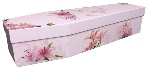 Pictorial Cardboard Coffin - Lily
