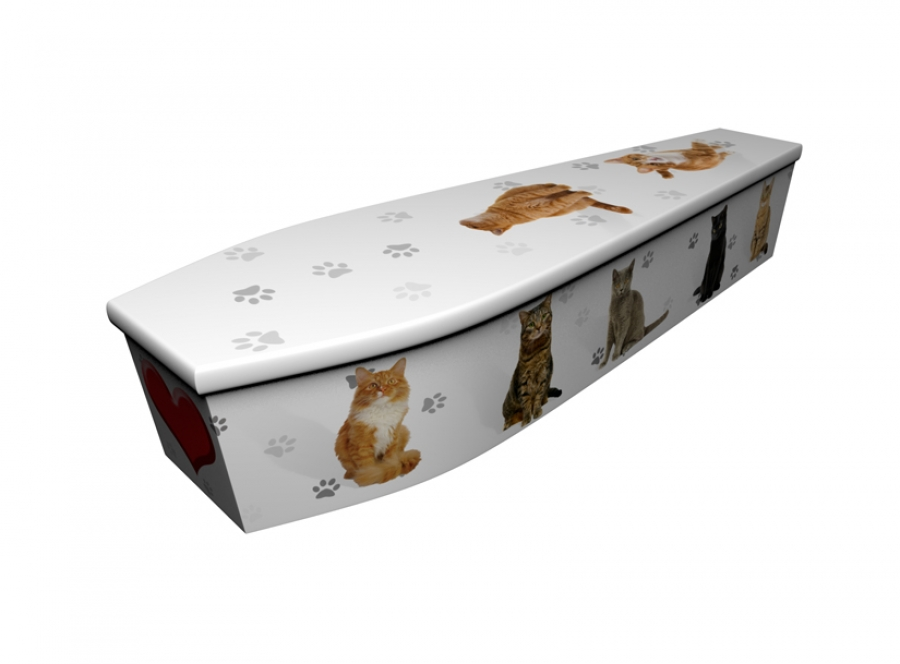 Wooden coffin - Cats with Heart - 4168