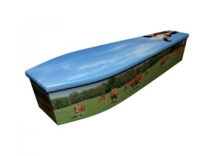 Wooden coffin - Cows - 4174