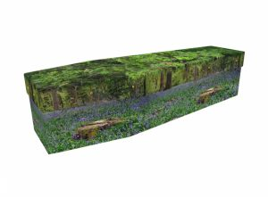 Cardboard coffin - Bluebell Forest - 3570