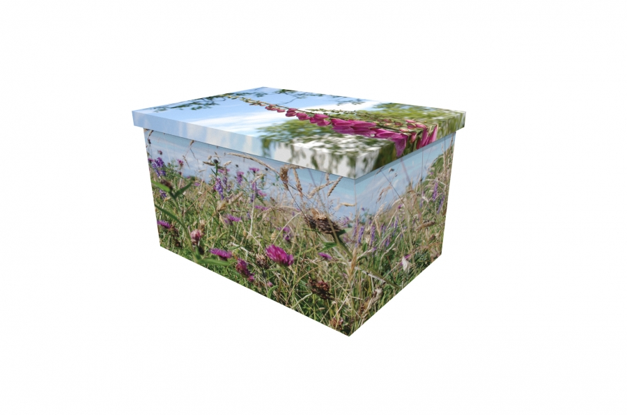 Cardboard Ash Casket - Higher Ground Meadow - 3904a