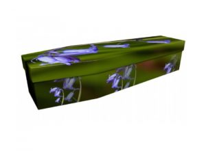 Cardboard coffin - Bluebell - 3935