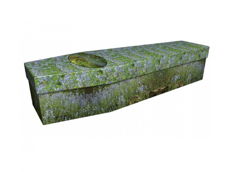 Cardboard coffin - Bluebell wood - 3682
