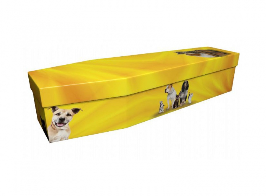 Cardboard coffin - Cats & Dogs - 3910