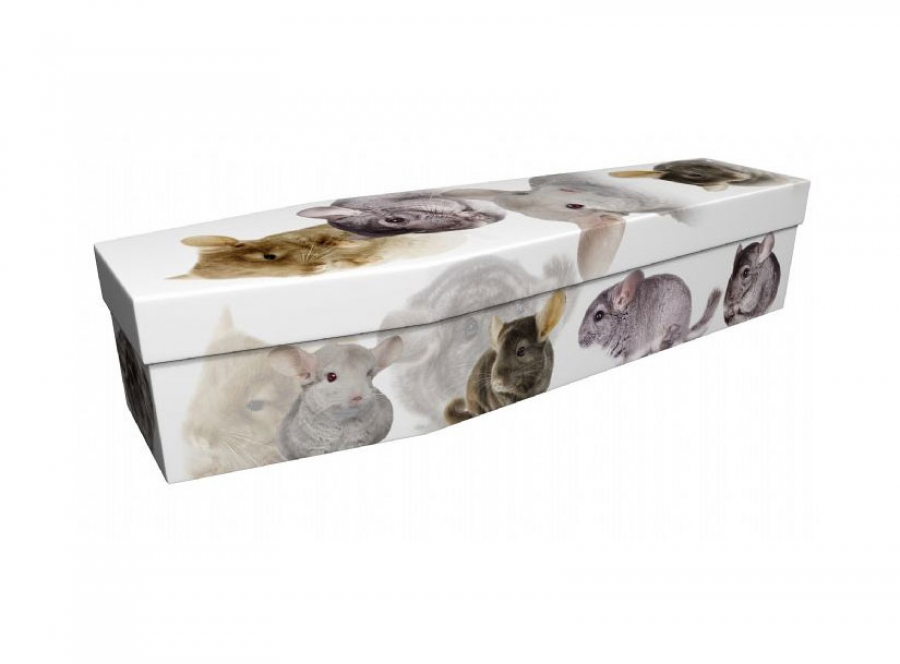 Cardboard coffin - Chinchillas - 3986