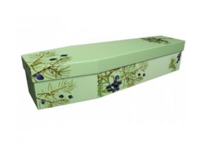 Cardboard coffin - Juniper on green - 3946
