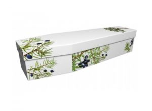Cardboard coffin - Juniper on white - 3947