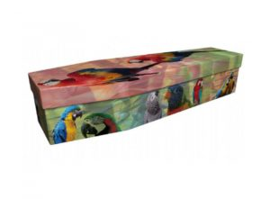 Cardboard coffin - Parrots and Macaws - 3991