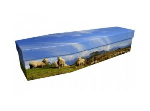 Cardboard coffin - Sheep - 3893