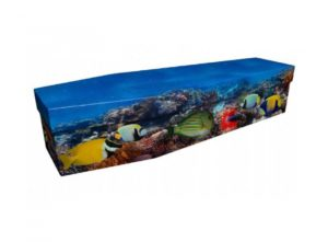 Cardboard coffin - Tropical fish - 3966