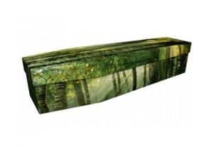 Cardboard coffin - Woodland scene - 3929