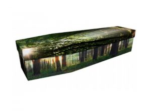 Cardboard coffin - Woodland sunburst - 3976