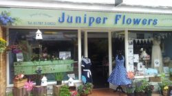 Juniper Flowers Shop