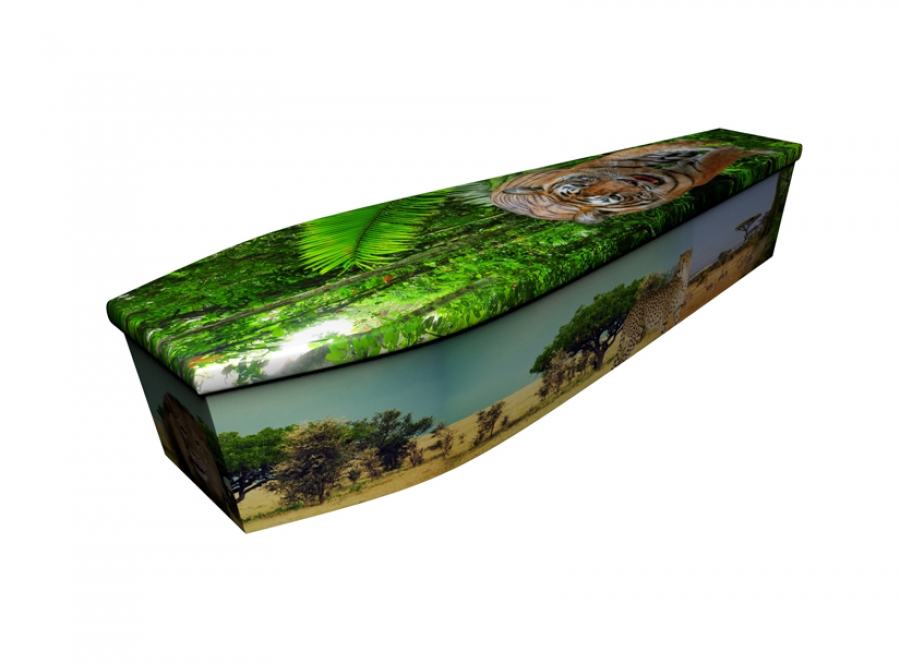 Wooden coffin - Big Cats - 4159