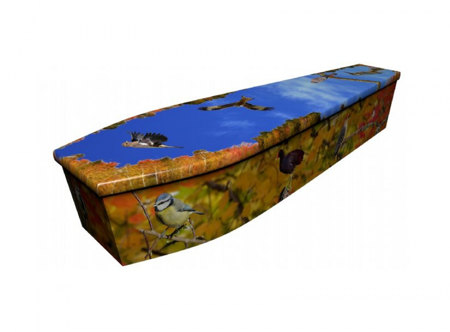 Wooden coffin - Birds of Britain autumn - 4070