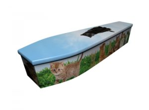 Wooden coffin - Cats - 4169