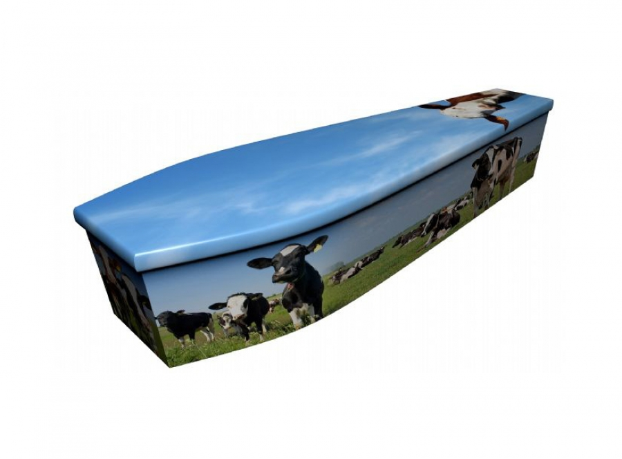 Wooden coffin - Cows - 4076