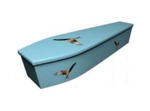 Wooden coffin - Red Kite - 4109