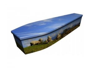 Wooden coffin - Sheep - 4016