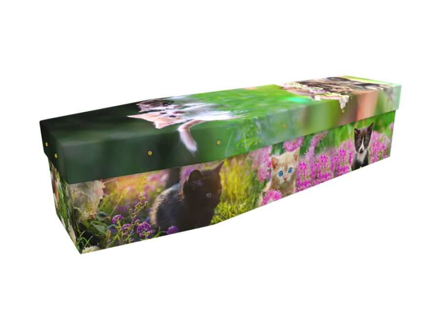 Cardboard coffin - Cute Kittens - 3519