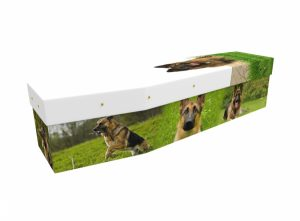 Cardboard coffin - German Shepherd - 3548