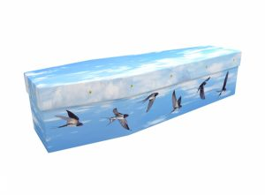 Cardboard coffin - Swallows - 3542
