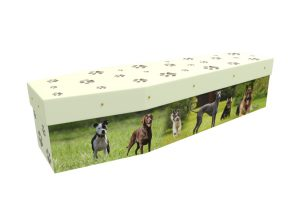 Dogs cardboard picture coffin