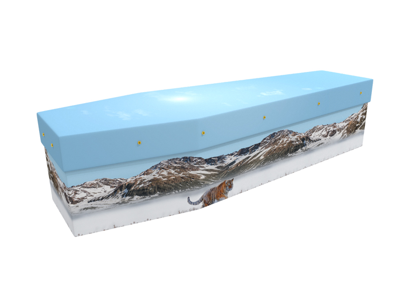 Bengal Tiger cardboard picture coffin