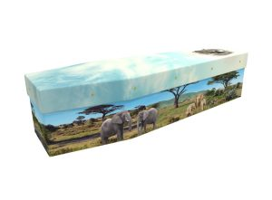 African elephants cardboard picture coffin